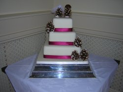 Pine cones wedding cake
